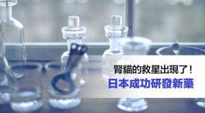 腎貓的救星出現了!日本成功研發新藥675x372