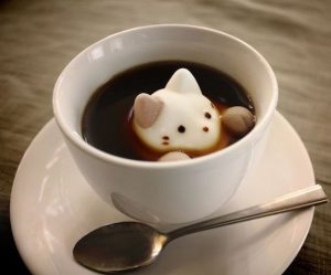 cat_latteart