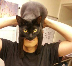 cat_ple