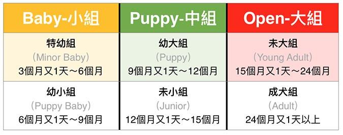 柴犬-依犬齡分組