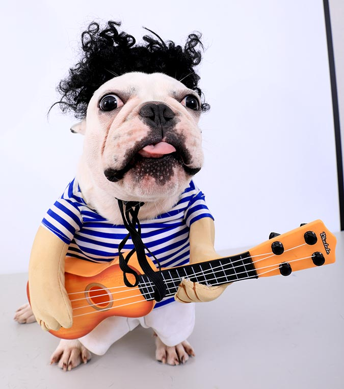 肉肉彈吉他