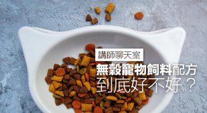 gluten-free-pet-food-teachers-chatroom