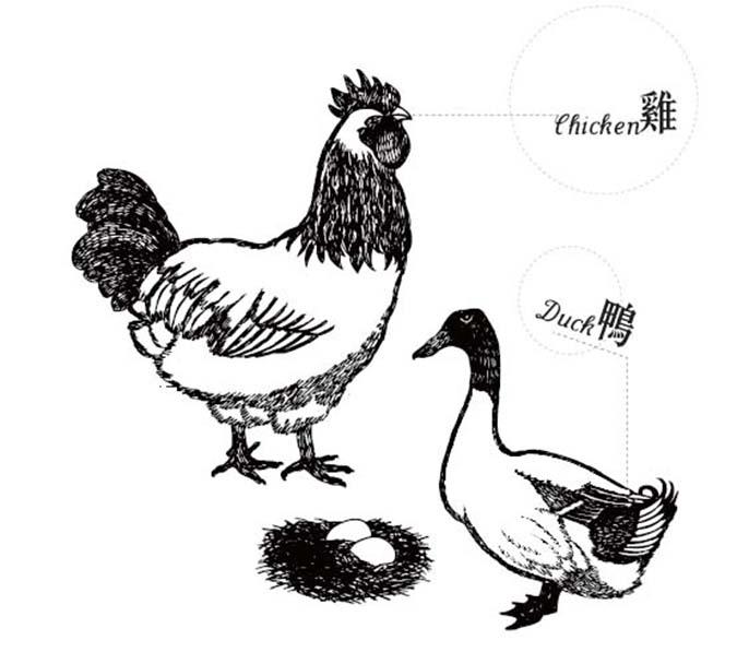 看懂飼料包裝-雞鴨
