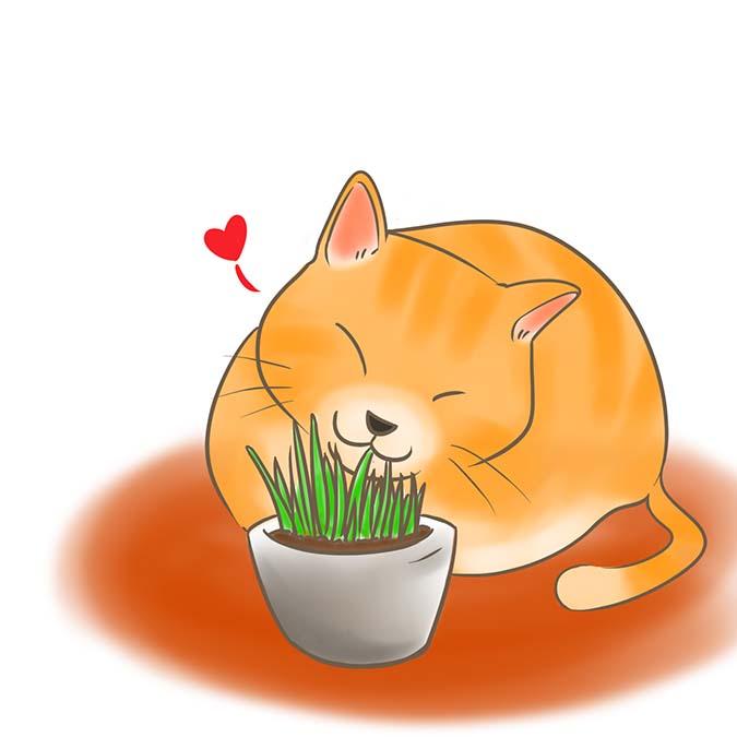 貓咪異嗜癖-貓咪吃貓草