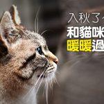 web_banner_0829_入秋了和貓咪暖暖過冬