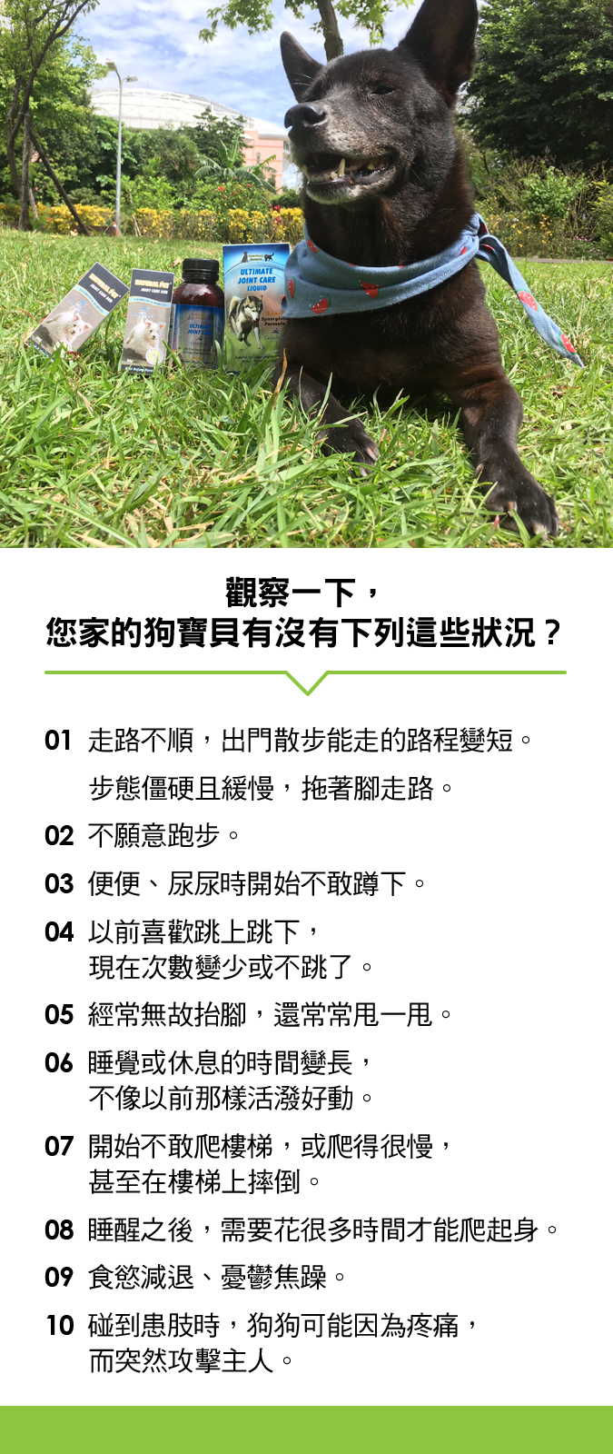 1022_沅慶_老犬關節_list