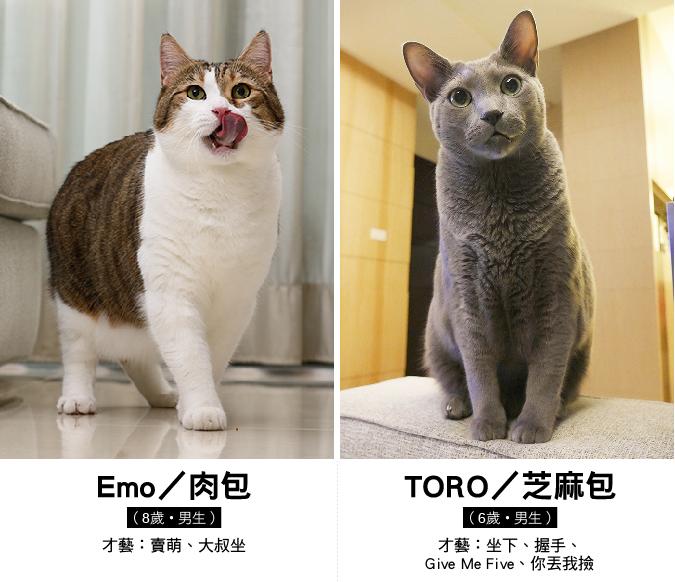 web_1011_emo和toro