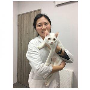 貓醫生的貓診所-謝富閔