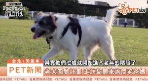 哈寵PETube-No.97 老犬有夢,狗狗圓夢計畫