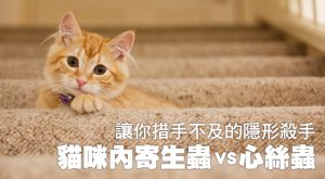 讓你措手不及的隱形殺手——貓咪內寄生蟲VS心絲蟲