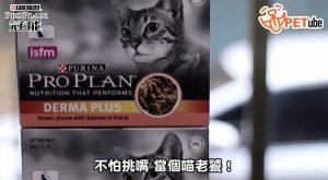 哈寵PETube-No.105 乾溼不分離,挑嘴貓最潮吃法