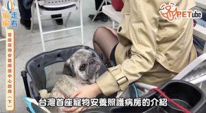 哈寵PETube-No.111 首座寵物安養照護中心啟用(下)