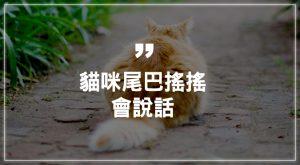 貓咪尾巴搖搖會說話