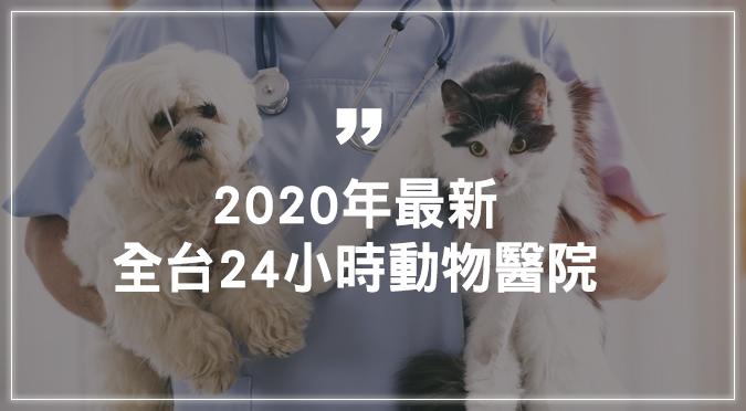 2020年最新!全台24小時動物醫院在這裡!