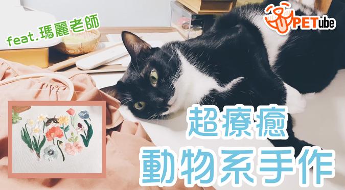 哈寵PETube-No.124 超療癒動物系手作(feat.瑪麗老師)