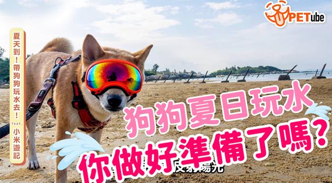 哈寵PETube-No.127 夏天到!帶狗狗玩水去!(feat.小米遊記)