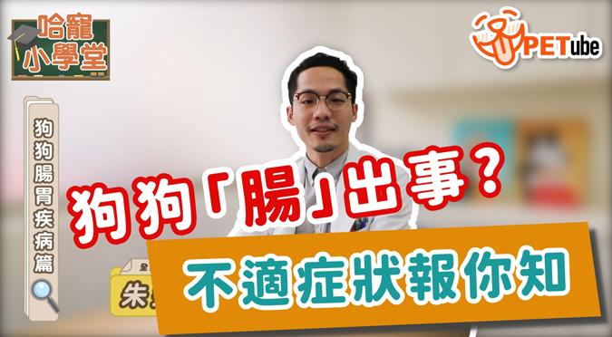 哈寵PETube-No.131 狗狗腸胃疾病篇(feat.朱道南獸醫師)