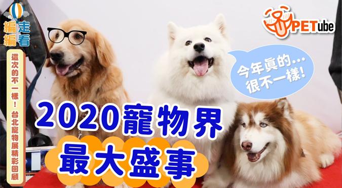 哈寵PETube-No.138 這次的不一樣!台北寵物展精彩回顧