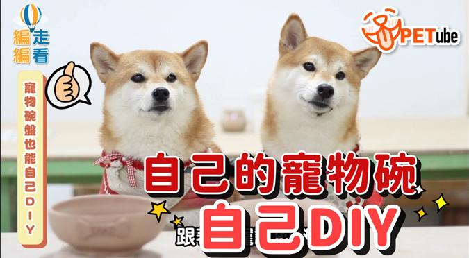 哈寵PETube-No.150 寵物碗也能自己DIY