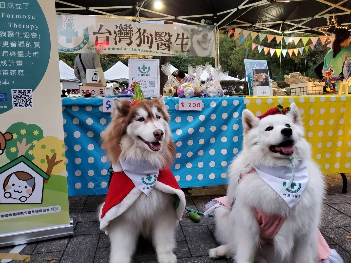 台灣狗醫生協會主要服務對象為弱勢族群,透過與狗兒之間的互動達到輔助治療的效果