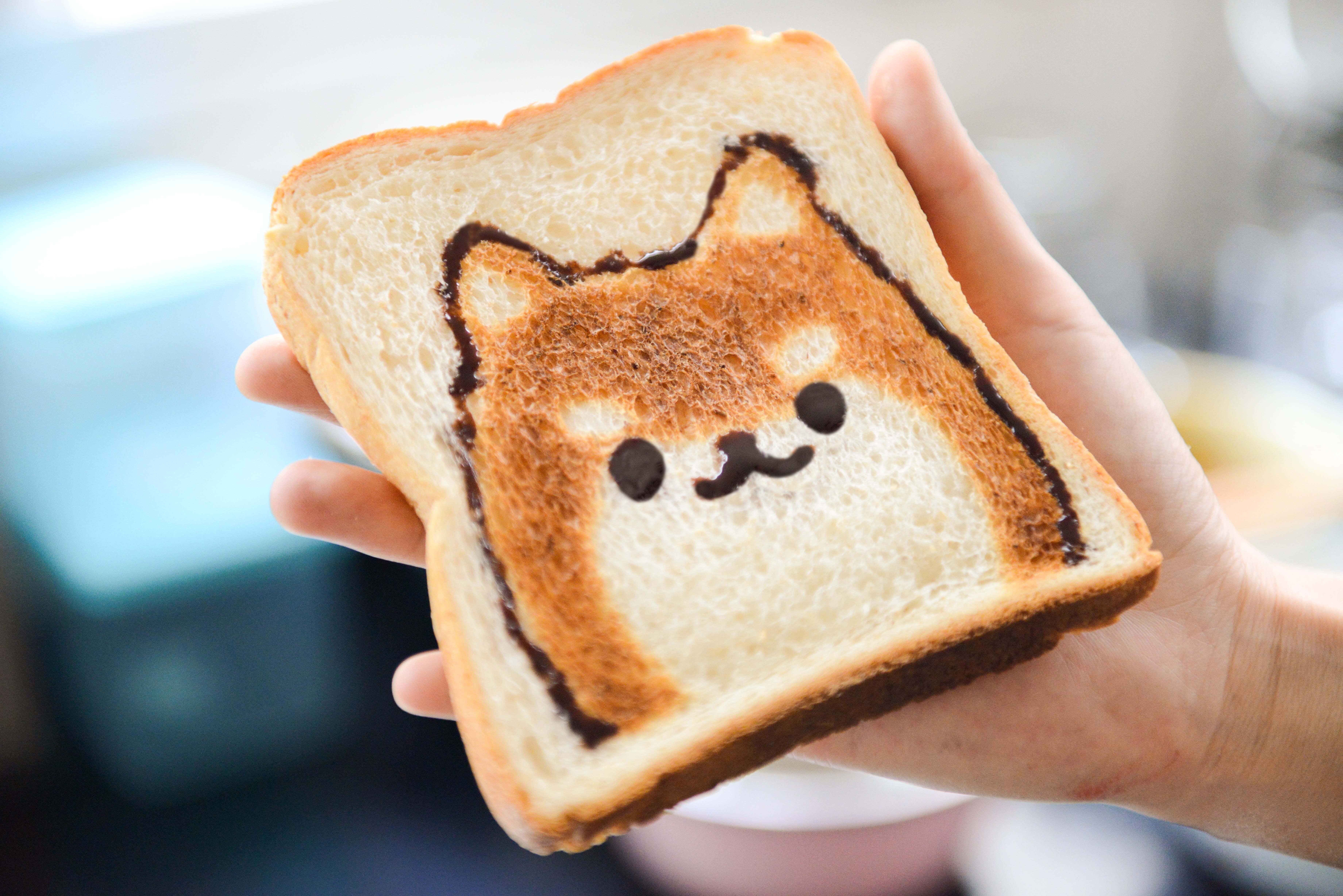 擔心狗狗飼料吃到膩而給予人的食物,其實是飼主的錯誤迷思