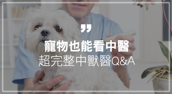 寵物也能看中醫!超完整中獸醫Q&A