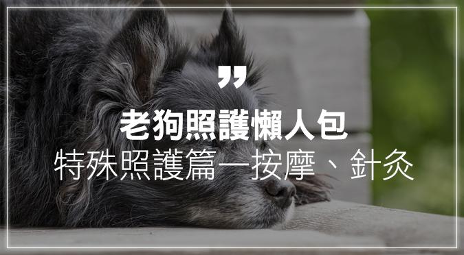 【老狗照護懶人包】特殊照護篇,按摩、針灸也可以!