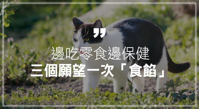 讓貓咪邊吃零食邊保健,三個願望一次「食餡」