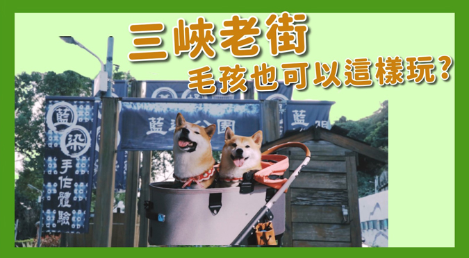 哈寵PETube-No.158 三峽老街 毛孩也可以這樣玩