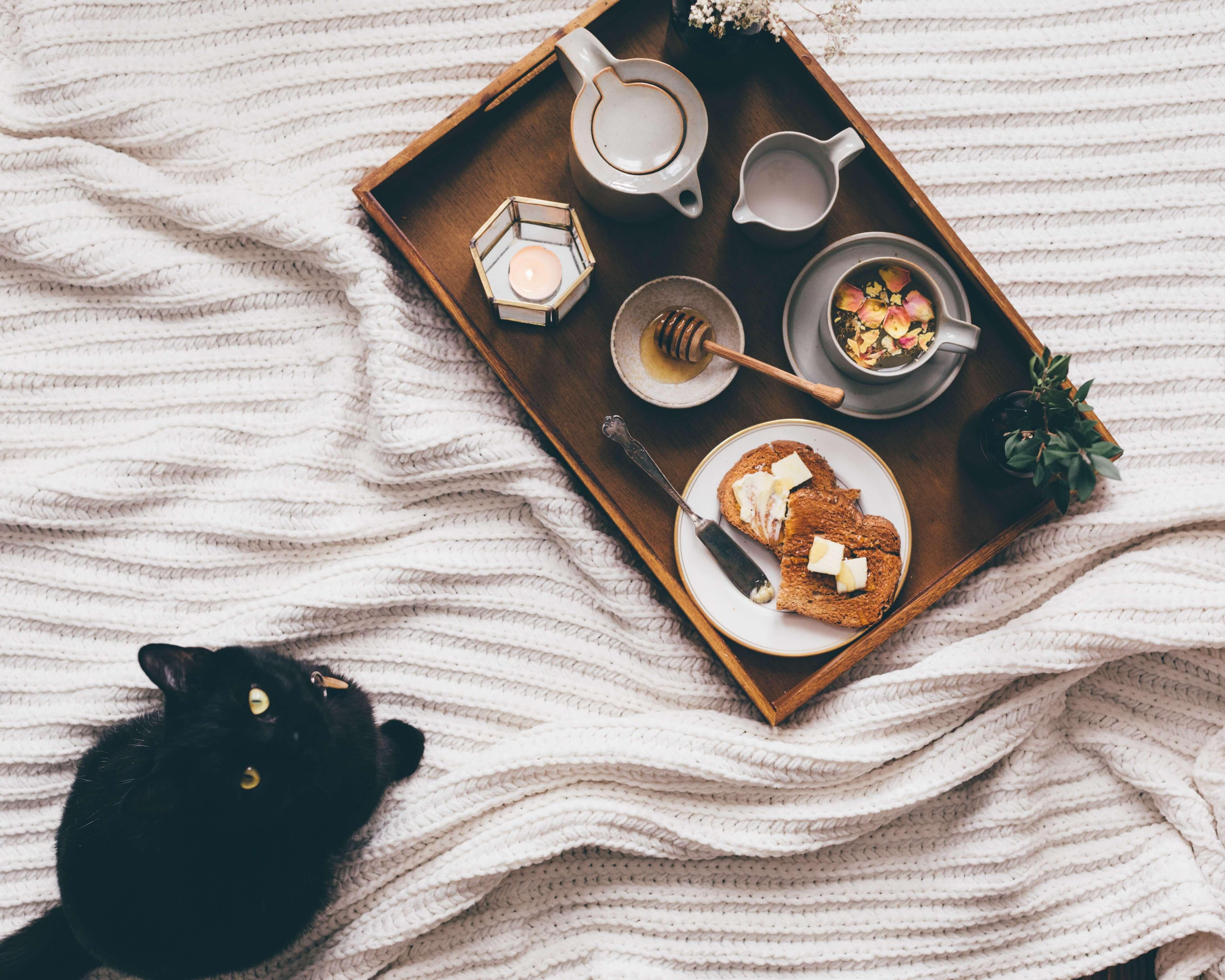 貓咪不會是過敏的單一原因,亦有可能是食物本身、或是環境中的塵蟎落在貓身上,而導致飼主過敏