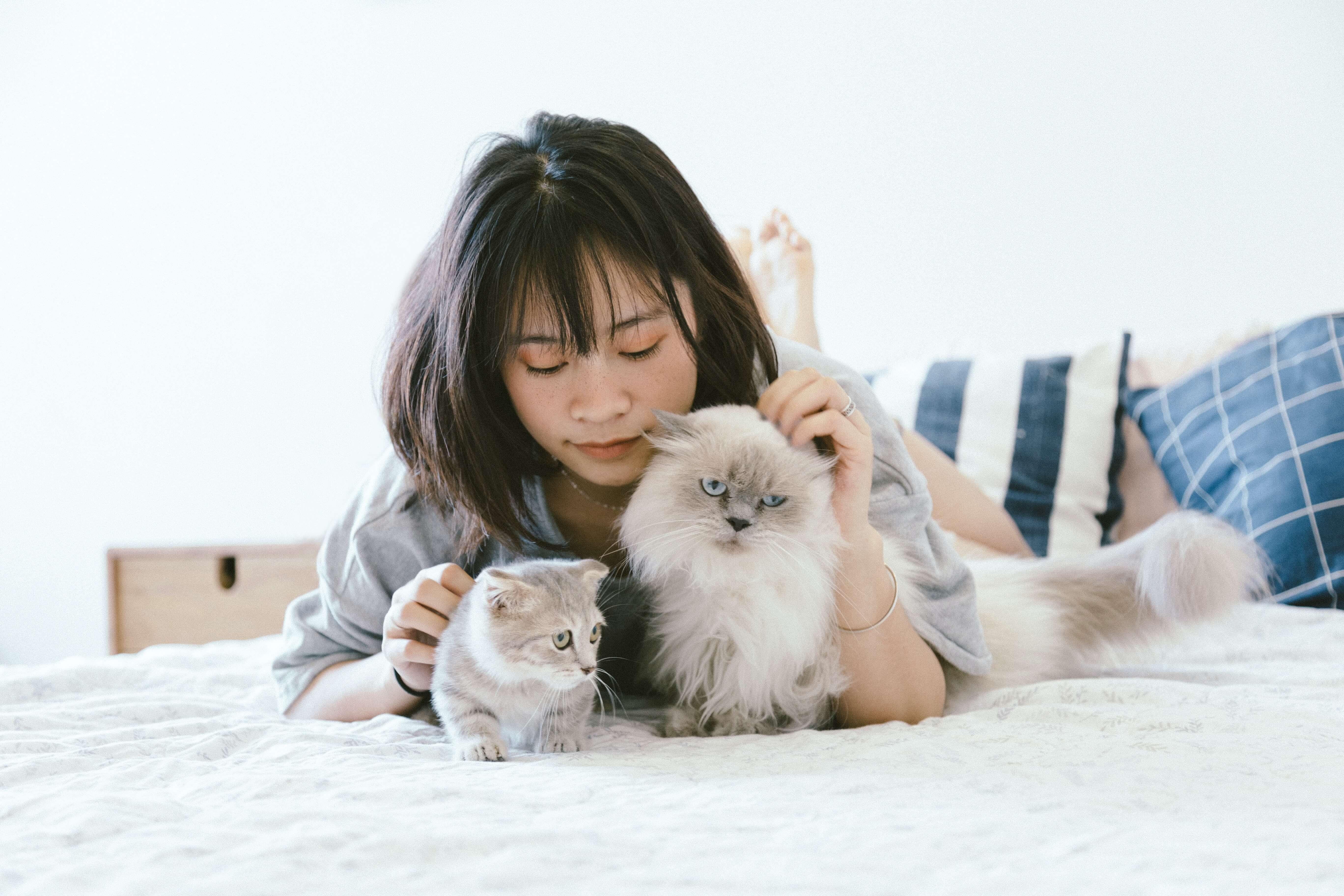 成年人要想辦法避開造成過敏的原因,不能把所有事情都怪在貓身上