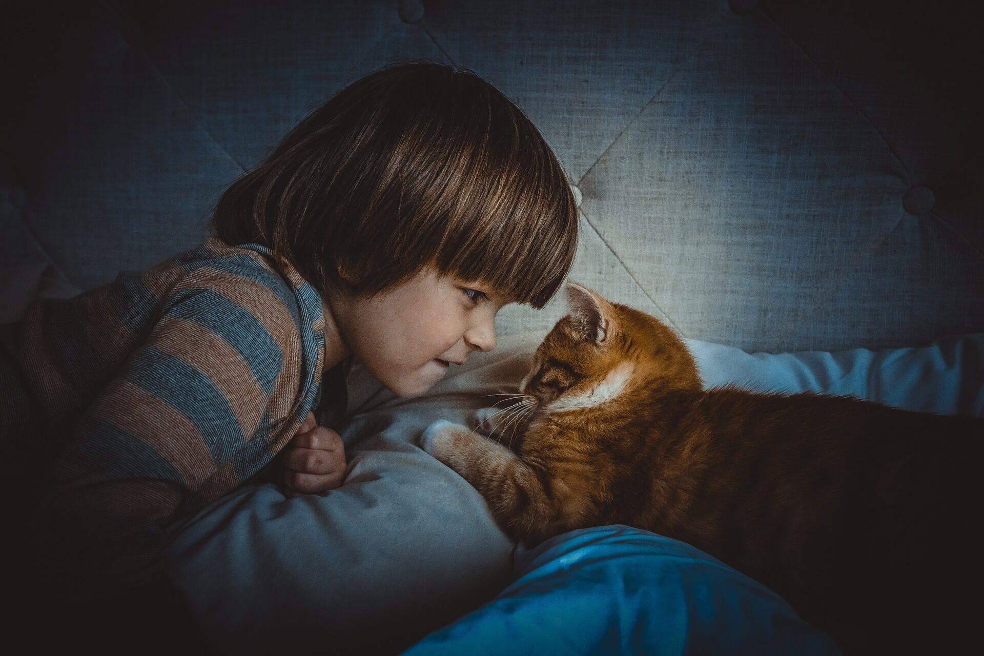 國外有做過研究,若小朋友跟小動物一起長大,發生過敏的機率確實會比較低