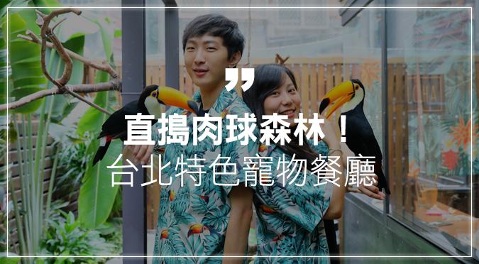 直搗肉球森林!台北永康街寵物主題餐廳