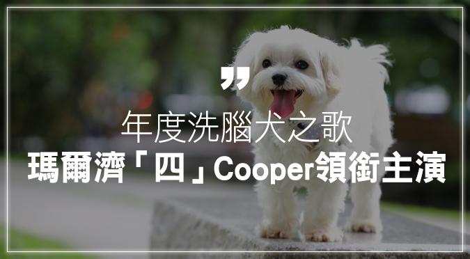 年度洗腦犬之歌——瑪爾濟「四」Cooper領銜主演!