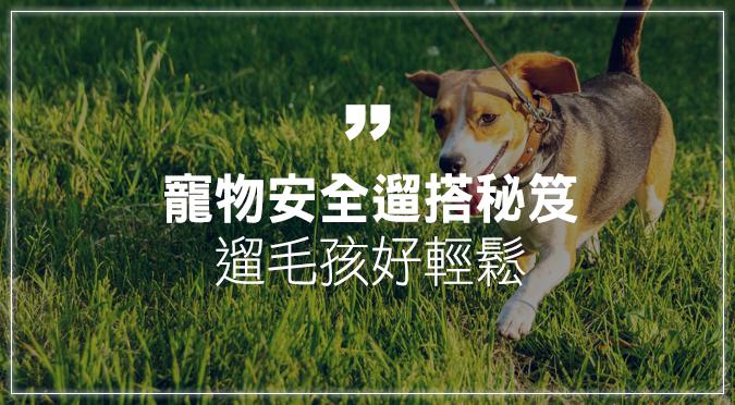 寵物安全遛搭秘笈