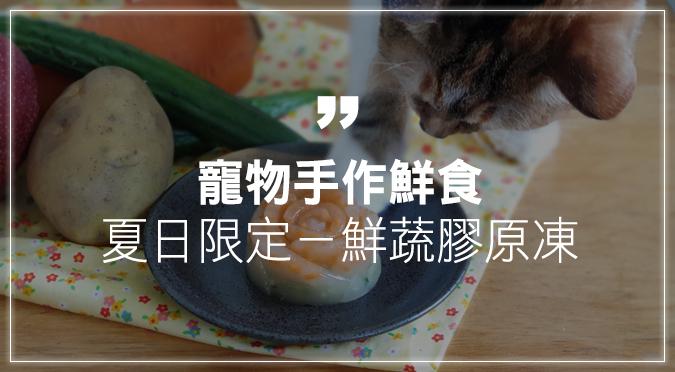 寵物手作鮮食  夏日限定-鮮蔬膠原凍