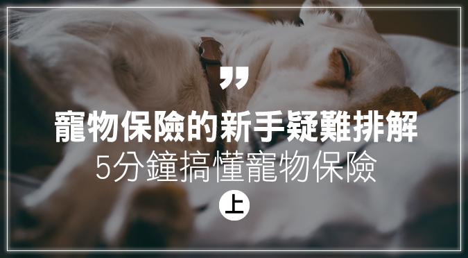 寵物保險的新手疑難排解(上)5分鐘搞懂寵物保險