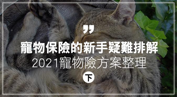 寵物保險的新手疑難排解(下)2021寵物險方案整理