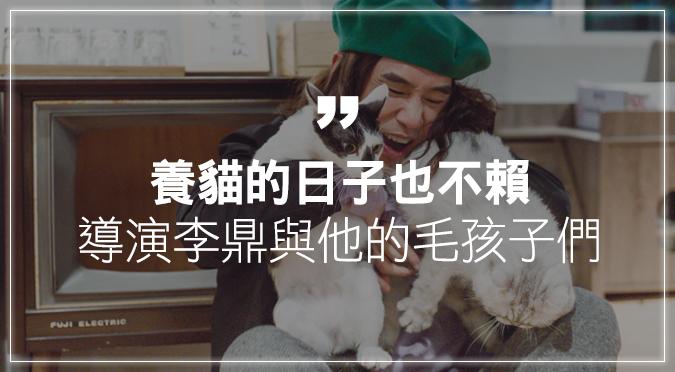 養貓的日子也不賴 導演李鼎與他的毛孩子們
