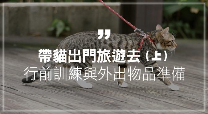 帶貓出門旅遊去(上):行前訓練與外出物品準備