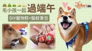 哈寵PETube-No.168 毛小孩也能過端午!DIY寵物地瓜粽+驅蚊香包