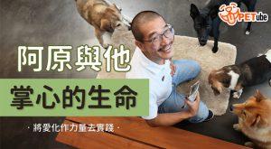 哈寵PETube-No.169 阿原與他掌心的生命,將對狗狗的愛化作力量去實踐