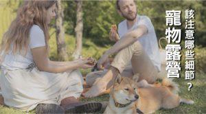 寵物露營 該注意哪些細節?