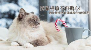 對貓過敏不再擔心!過敏權威洛桑醫師教你如何應對