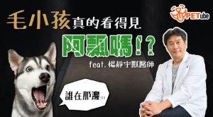 哈寵PETube-No.173 鬼月毛毛的  寵物真的看得到阿飄嗎!feat.楊靜宇獸醫師