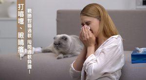 打噴嚏、眼睛癢! 戰勝對貓過敏 甩開過敏負擔!